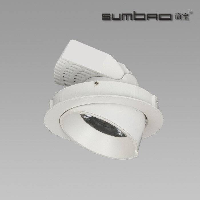 DW034 Adjustable 10W/18W/24W/30W COB Trunk lamp LED Downlight