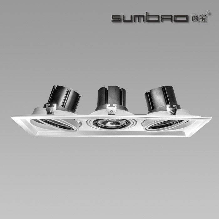DW015-3 SUMBAO Multi-Head LED luminaires are ideal for retail accent lighting