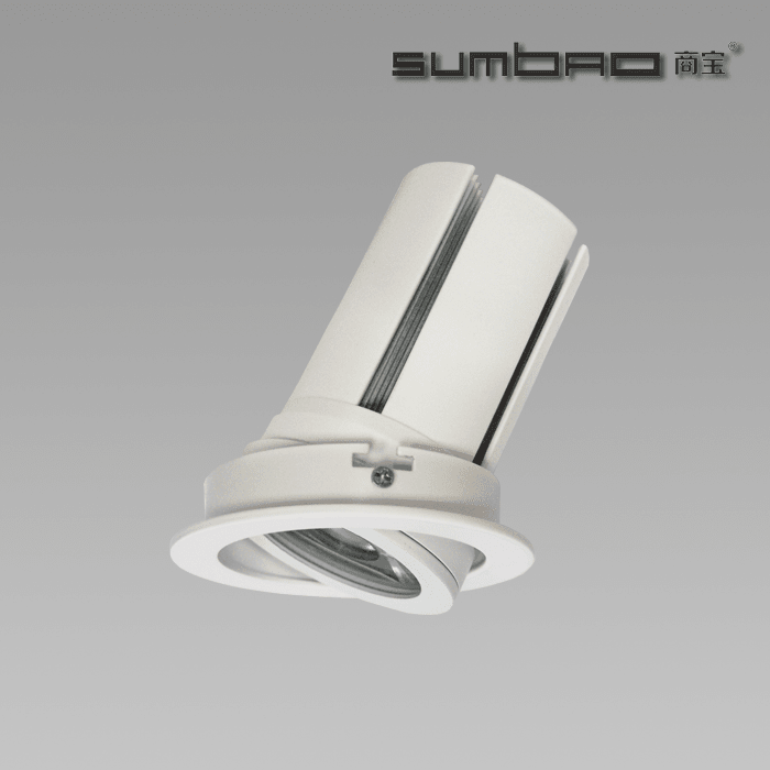 DW076-  SUMBAO Professional Round Trim 24W Recessed Spotlights for High End Retail Shops, Residences Application