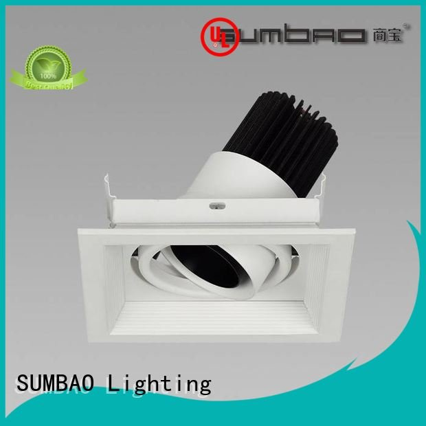 SUMBAO Brand 10w professional dw0723 LED Recessed Spotlight dw0302