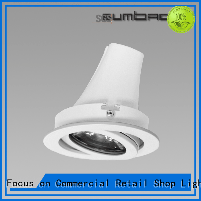 Hot 4 inch recessed lighting Exhibition room LED Recessed Spotlight dw065 SUMBAO